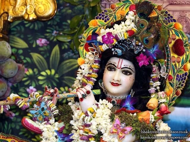 Sri Gokulananda Close up Wallpaper (019)
