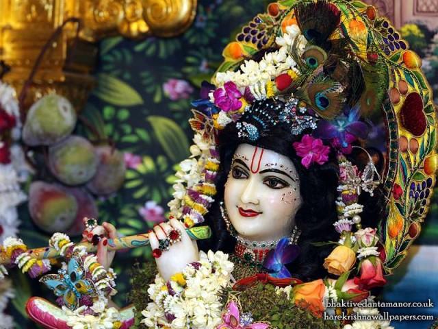 Sri Gokulananda Close up Wallpaper (020)
