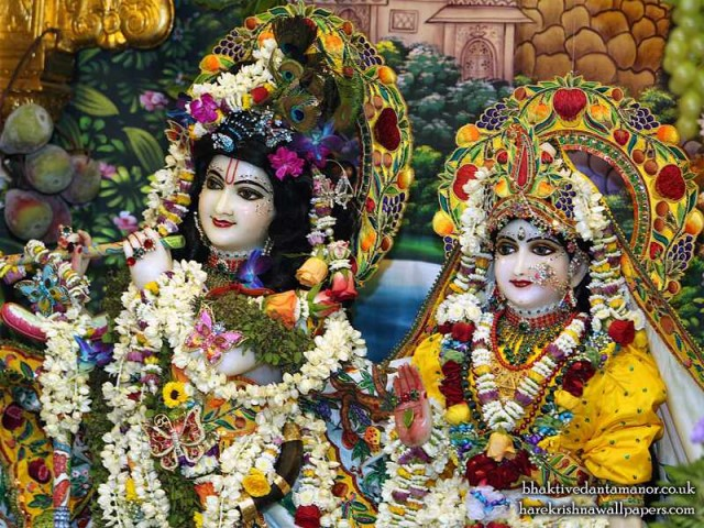 Sri Sri Radha Gokulanand Close up Wallpaper (023)