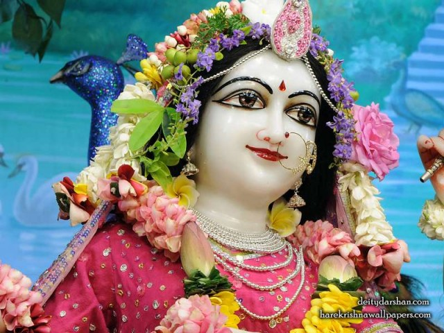 Srimati Radharani Close up Wallpaper (107)