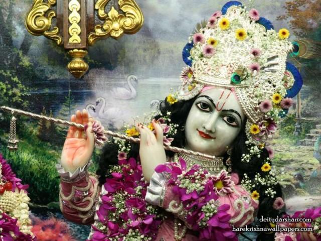 Sri Gopinath Close up Wallpaper (148)