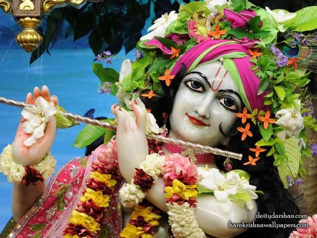 Sri Gopinath Close up Wallpaper (165)