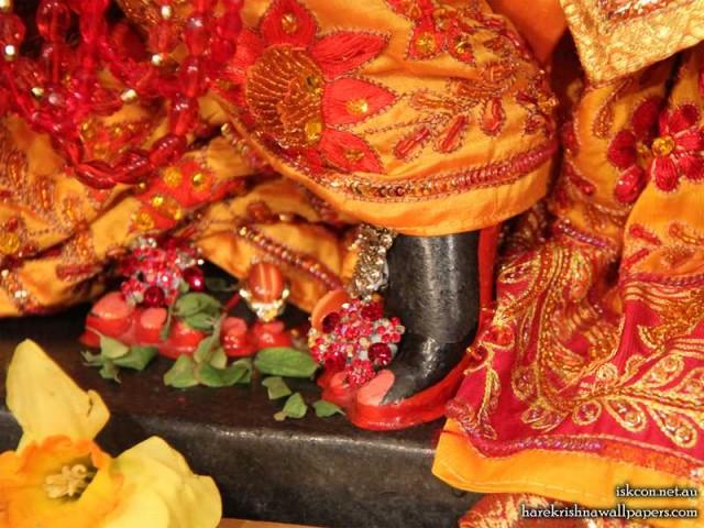Sri Vallabh Feet Wallpaper (002)