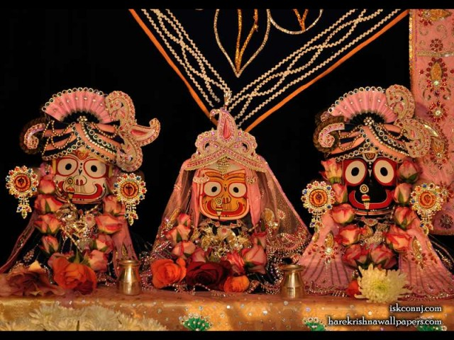 Jagannath Baladeva Subhadra Wallpaper (005)
