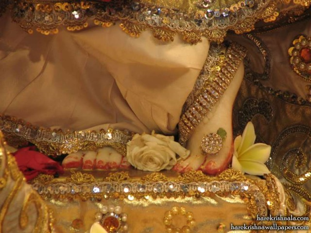 Sri Dwarkadhish Feet Wallpaper (005)