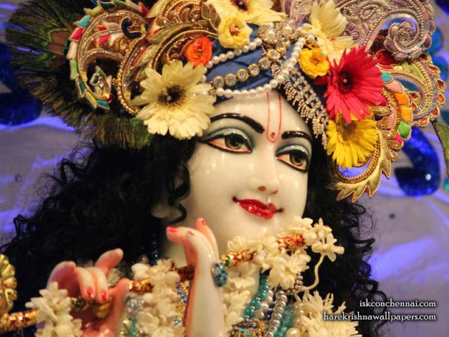 Sri Krishna Close up Wallpaper (007)