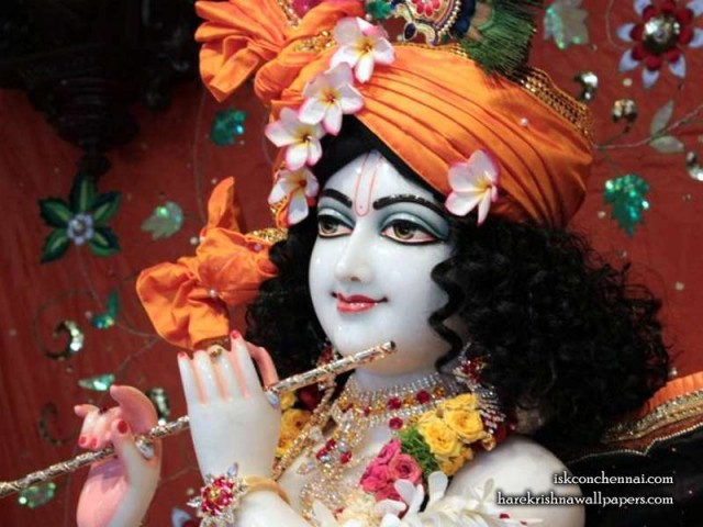 Sri Krishna Close up Wallpaper (010)