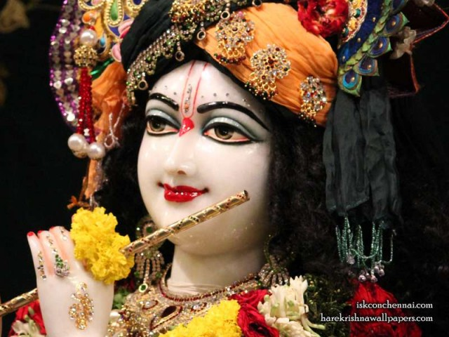 Sri Krishna Close up Wallpaper (014)
