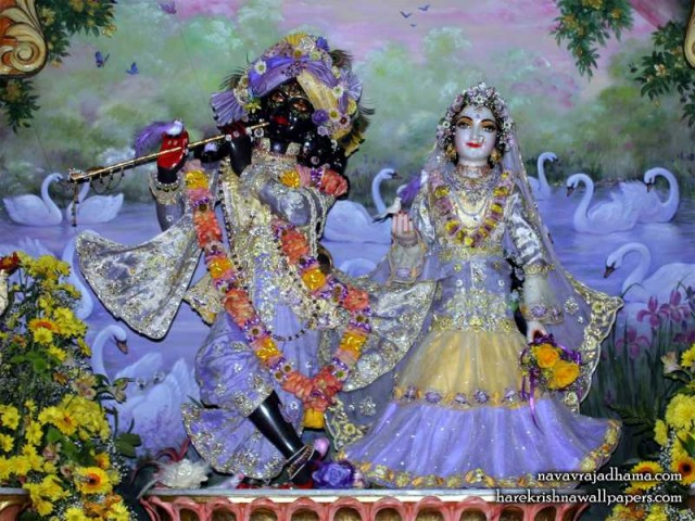 Sri Sri Radha Shyamsundar Wallpaper (016)