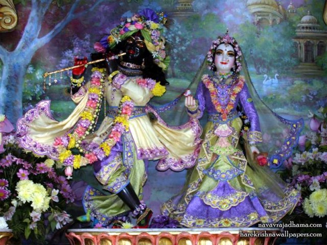 Sri Sri Radha Shyamsundar Wallpaper (029)