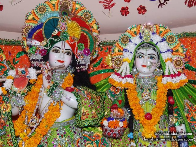 Sri Sri Radha Venimadhava Close up Wallpaper (004)