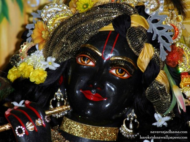 Sri Shyamsundar Close up Wallpaper (012)