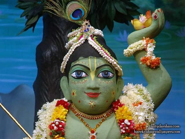 Sri Gopal Close up Wallpaper (027)