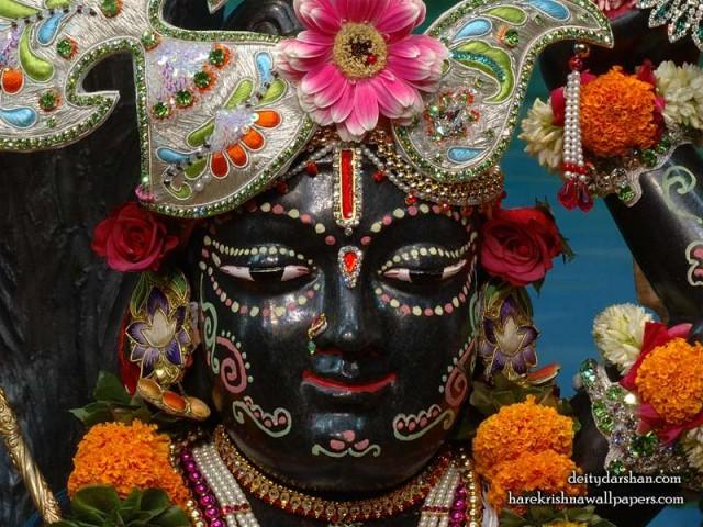 Sri Gopal Close up Wallpaper (034)