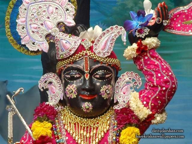 Sri Gopal Close up Wallpaper (050)