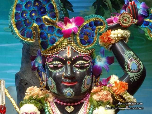 Sri Gopal Close up Wallpaper (051)