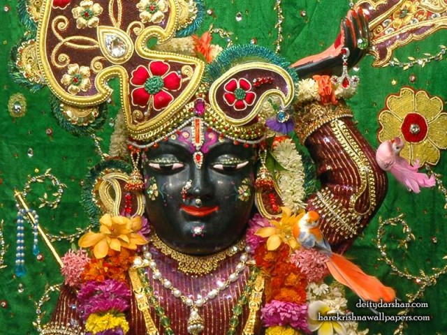Sri Gopal Close up Wallpaper (054)