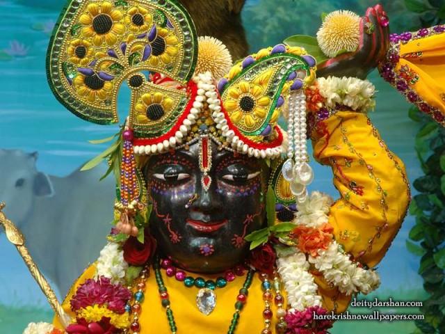 Sri Gopal Close up Wallpaper (057)