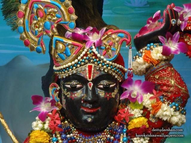 Sri Gopal Close up Wallpaper (062)