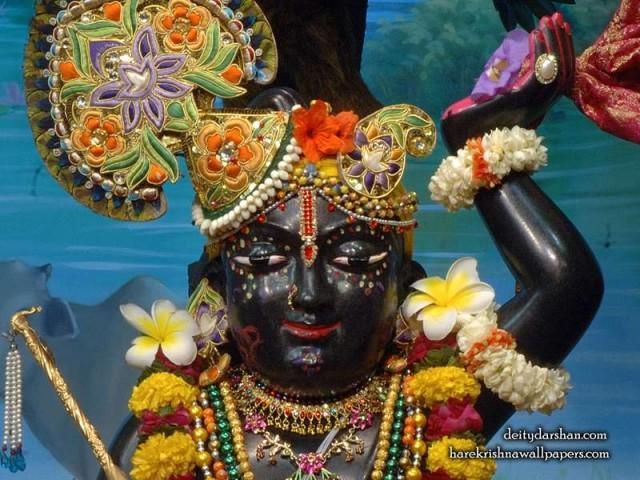 Sri Gopal Close up Wallpaper (063)