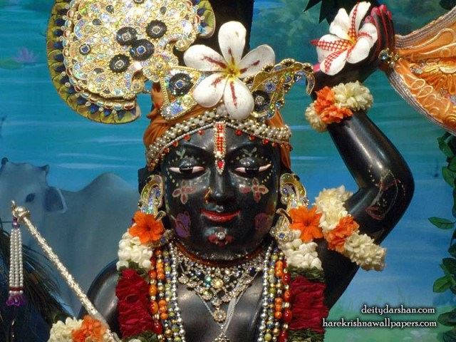 Sri Gopal Close up Wallpaper (064)