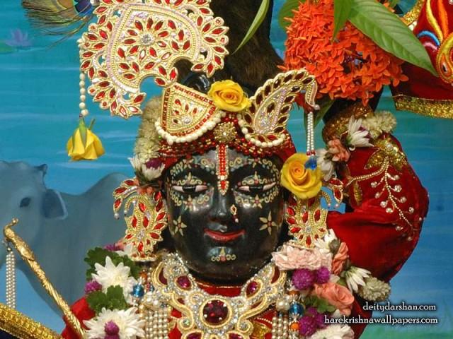 Sri Gopal Close up Wallpaper (066)