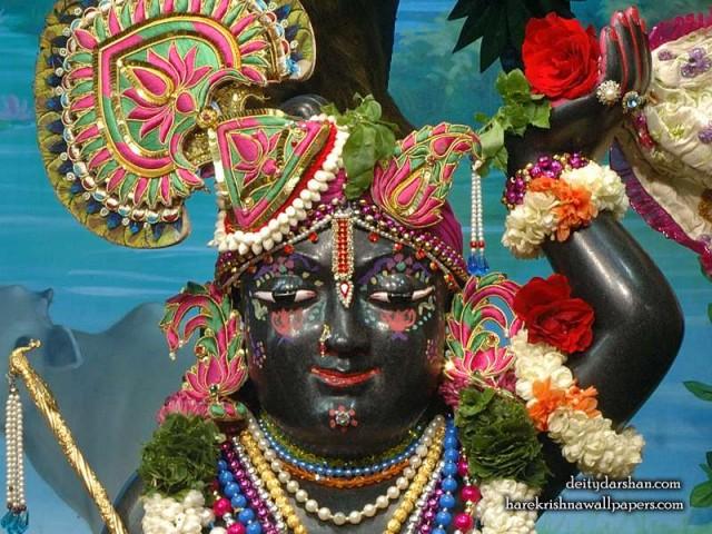 Sri Gopal Close up Wallpaper (067)