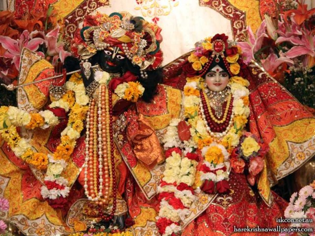 Sri Sri Radha Vallabh Wallpaper (004)