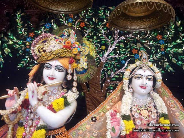 Sri Sri Radha Krishna Close up Wallpaper (008)