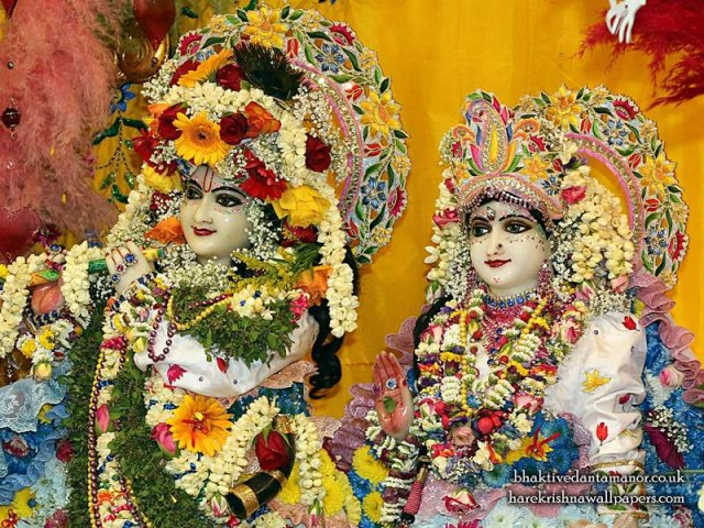 Sri Sri Radha Gokulananda Close up Wallpaper (025)