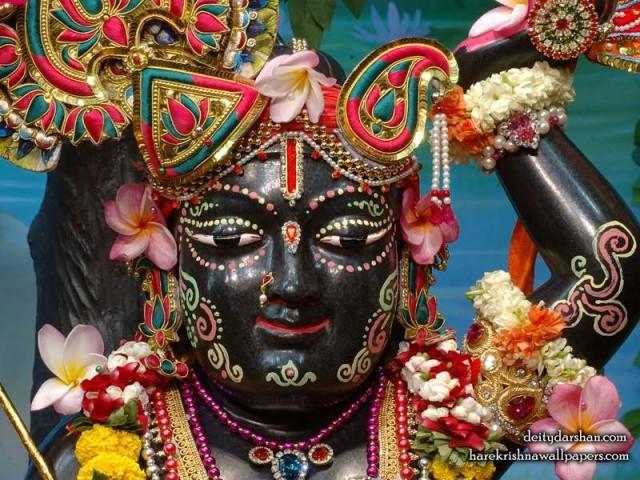 Sri Gopal Close up Wallpaper (035)