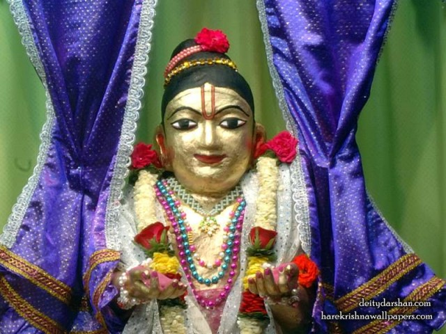 Sri Gopal Close up Wallpaper (042)