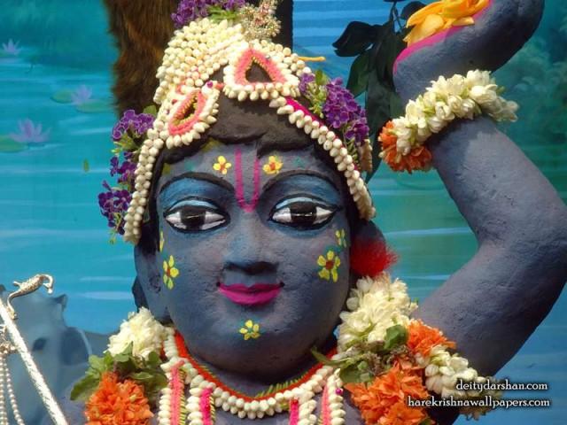 Sri Gopal Close up Wallpaper (043)