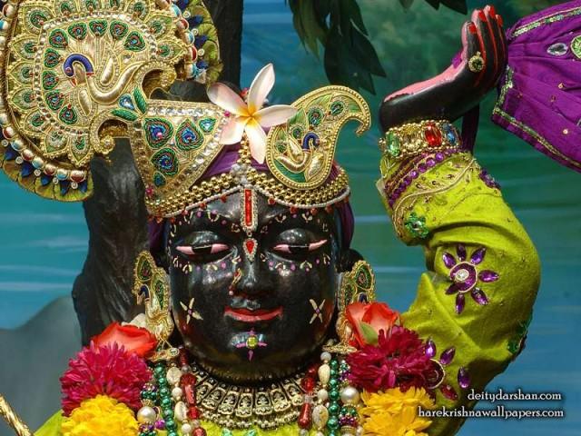 Sri Gopal Close up Wallpaper (049)