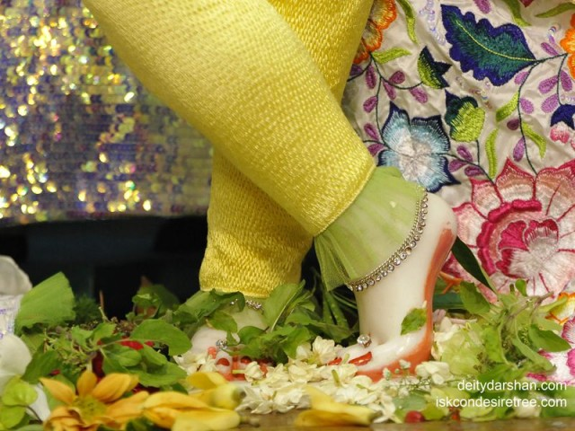 Sri Gopinath Feet Wallpaper (006)