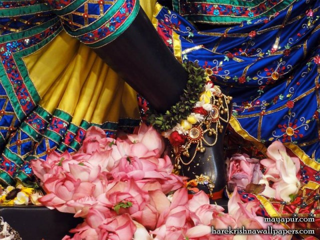 Sri Madhava Feet Wallpaper (019)