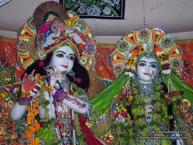 Sri Sri Radha Venimadhava Close up Wallpaper (001)