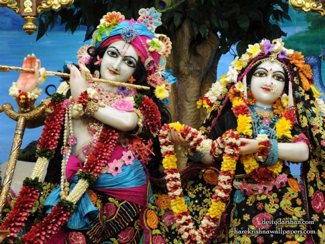 Sri Sri Radha Gopinath Close up Wallpaper (053)