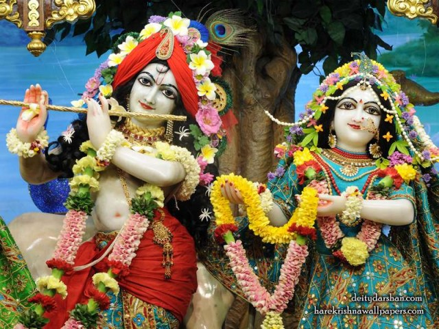 Sri Sri Radha Gopinath Close up Wallpaper (057)