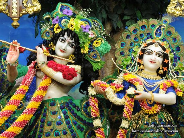 Sri Sri Radha Gopinath Close up Wallpaper (061)