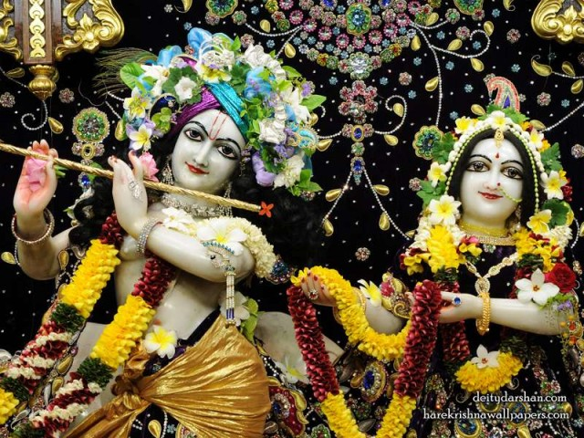 Sri Sri Radha Gopinath Close up Wallpaper (067)