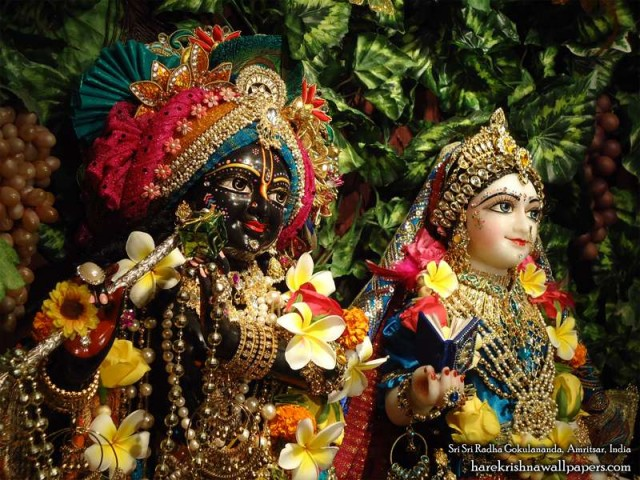 Sri Sri Radha Gokulananda Close up Wallpaper (016)