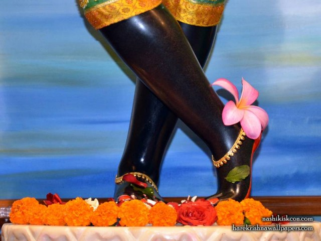 Sri Madan Gopal Feet Wallpaper (001)