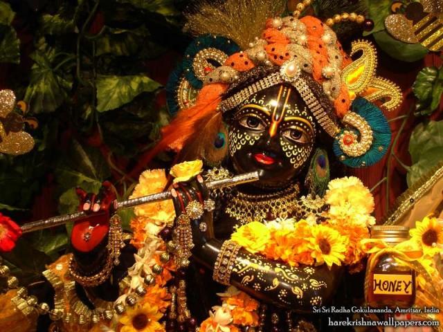 Sri Gokulananda Close up Wallpaper (009)