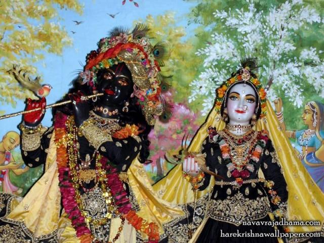 Sri Sri Radha Shyamsundar Close up Wallpaper (010)