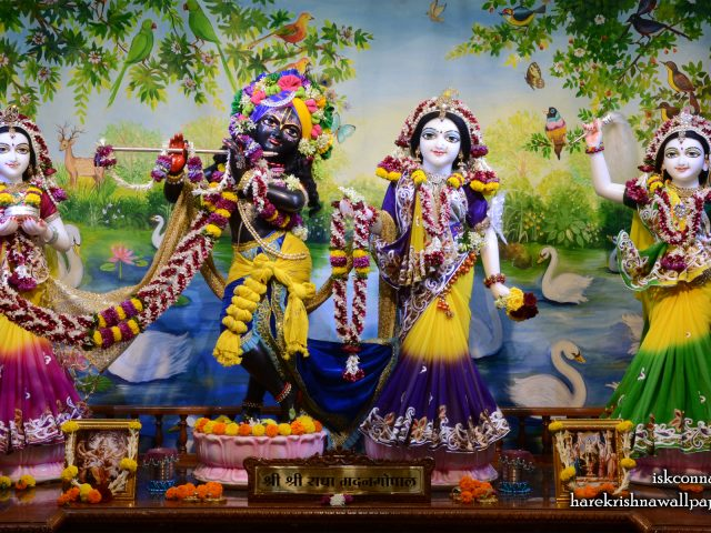 Sri Sri Radha Madan Gopal Lalita Vishakha Wallpaper (001) Size 1920×1200 Download