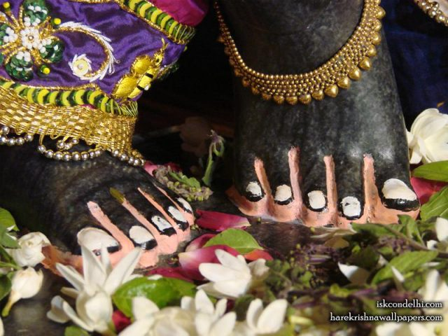 Sri Parthasarathi Feet Wallpaper (002)