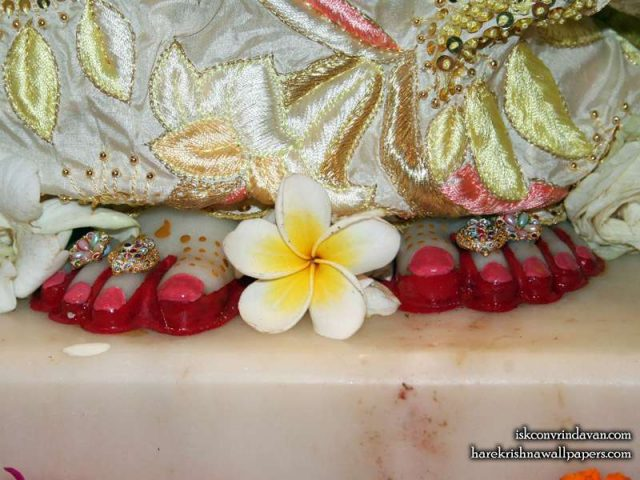 Sri Radha Feet Wallpaper (002)