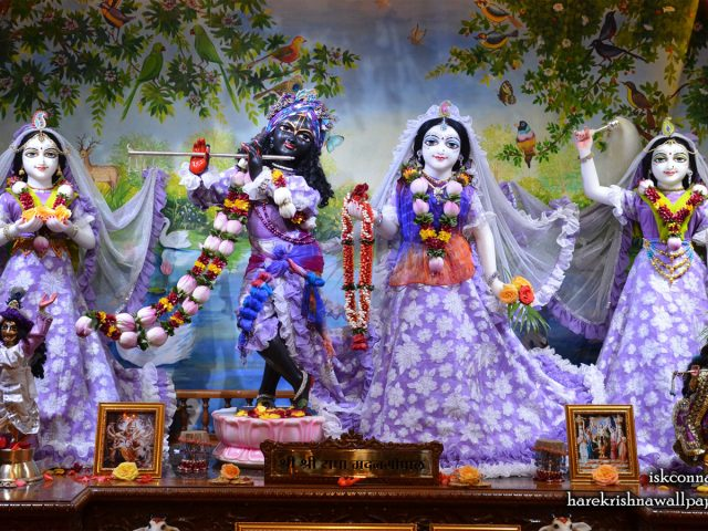 Sri Sri Radha Madan Gopal Lalita Vishakha Wallpaper (002) Size 1440×900 Download