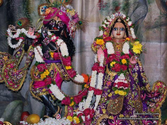 Sri Sri Radha Parthasarathi Wallpaper (002)